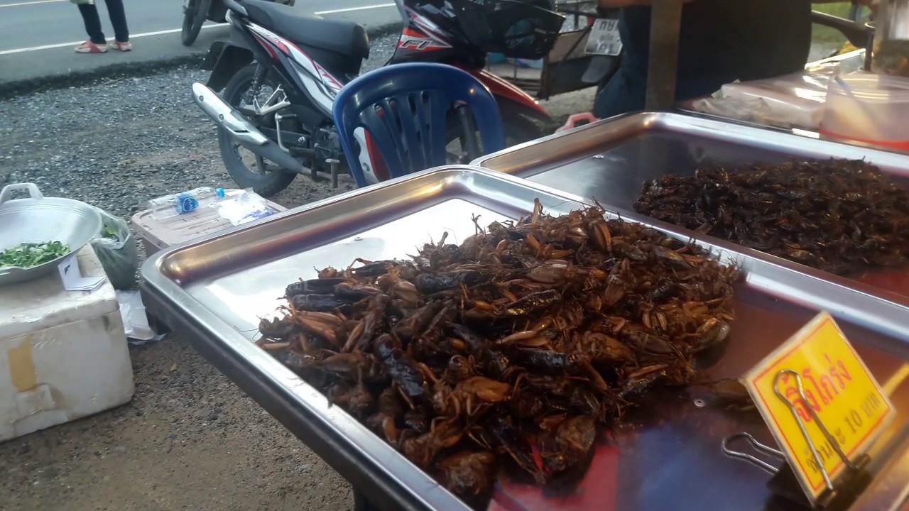 Картинки по запросу жареные тараканы