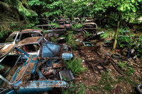 70 лет в пробке: автомобильное кладбище в Бельгии