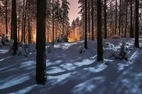 Мистическое сияние в финском лесу