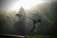 Сказочные скульптуры фей в Садах Трентхэма