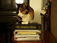 21 факт, который ты обязан знать о Китае. Вот так диковинка, я и не знал!