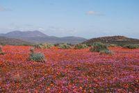 22 невероятно красочных места на Земле. Часть 2