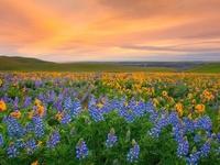20 мест на планете, где природа не пожалела красок