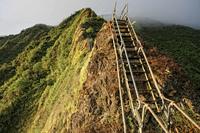 Уникальная лестница, ведущая прямо в небеса – невообразимое зрелище