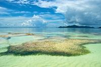 Съемки самого фотогеничного пляжа на планете. Истинная находка для всех ценителей прекрасного