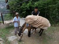 Небесная дорога для храбрых жителей деревни