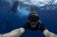 Погружаясь в Тихий океан с нежными гигантами