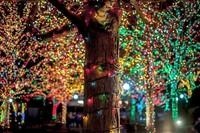 25 фантастических фото ночных городов, на огни которых хочется смотреть вечно