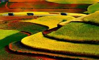 Потрясающие фотографии красных земель долины Дончуань