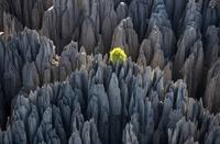 10 потрясающих мест на нашей планете, до которых не добрался человек