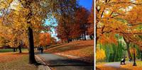 21 бесподобное место в США, где осень понравится даже тем, кто ее терпеть не может