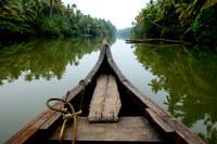 Сможешь ли ты посмотреть на ЭТО и не захотеть в Кералу прямо сейчас?