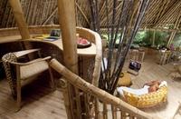 Бамбуковые дома на Бали, перед которыми не смогли устоять даже самые богатые люди мира!