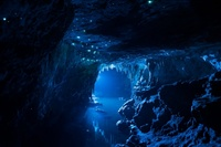 Это не фотошоп и не картинка из сказки, а самая настоящая пещера в Новой Зеландии!