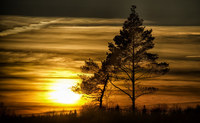 26 причин, почему никому и никогда не следует ехать в шведский Сконе