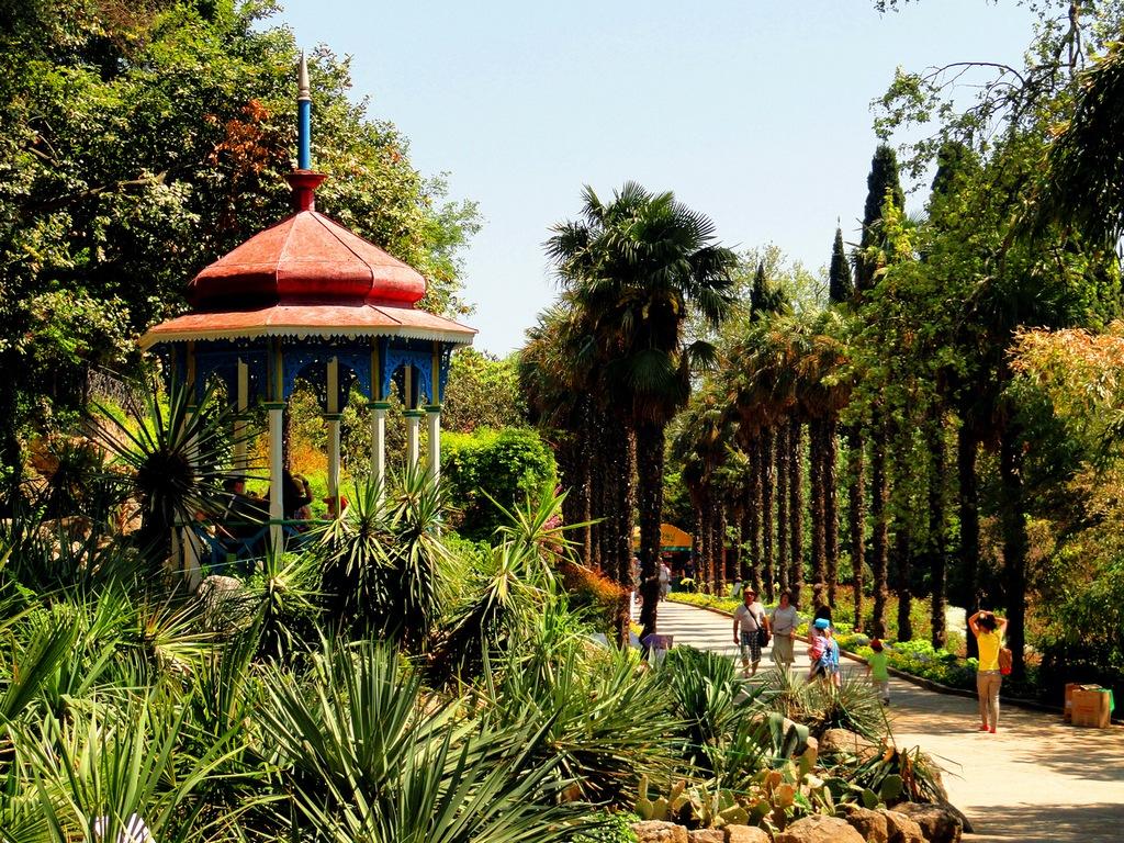 Никитский ботанический сад в Крыму растения цветы деревья  Оздоровительный центр Никитский ботанический сад