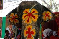 Как проходит тайский Новый год. Удивительный Таиланд.