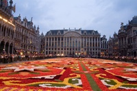 9 интересных фото о том, как каждый год брюссельскую площадь превращают в произведение искусства