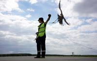 Зачем аэропорту орнитологическая служба и как это работает в Домодедово