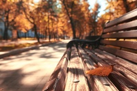 11 теплых и ярких фото, доказывающих, что осень ничем не хуже лета