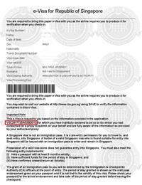 Виза в Сингапур - что нужно для визы в Сингапур - цена, документы, срок оформления