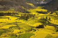 16 уголков Земли, где весной особенно красиво