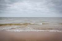 Море Светлогорска