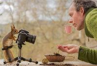Фотограф создает самые креативные и забавные снимки с дикими белками