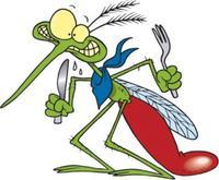 Почему одних комары кусают чаще, чем других?