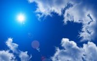 Глаза моли как средство от солнечных бликов на смартфонах