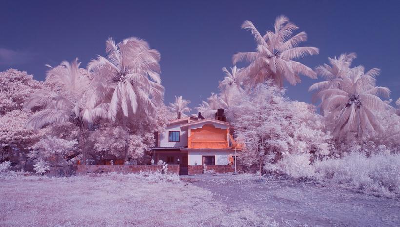 16 инфракрасных снимков о том, как выглядит Гоа в межсезонье