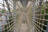«Путь по кронам деревьев» или прогулка по реликтовым буковым лесам Германии