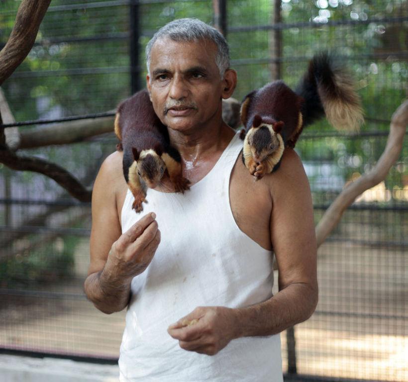 Индийская семья годами спасала детенышей животных, превратив свой дом в заповедник