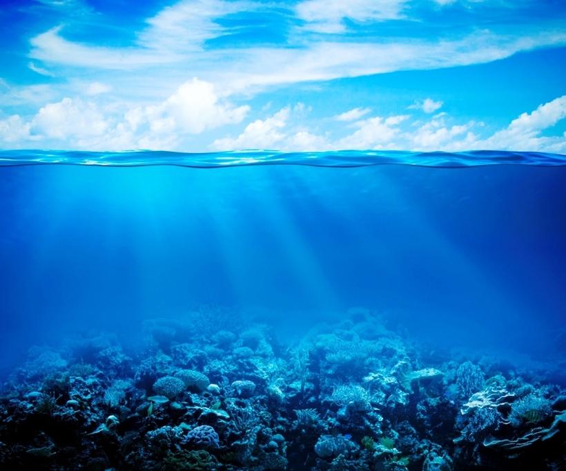 Какую часть поверхности Земли занимает Мировой океан   небольшой реферат на тему Мировой океан Конечно с того времени наука значительно расширила свои познания однако основные факты остались неизменны