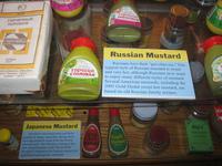 Каких продуктов больше всего не хватает русским вдали от родины