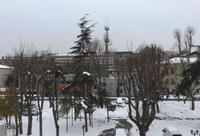 Январский снег в Стамбуле