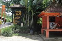 Кофейная плантация на Бали, февраль 2017