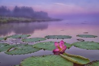 5 красивейших озер России, которые должен увидеть каждый
