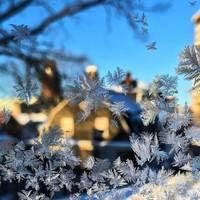 Люди делятся невероятными фото о том, как сейчас холодно в Америке и Канаде