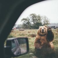 30 крутых фото из Project Van Life о том, к чему приводит страсть к путешествиям