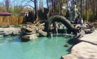 Китайский дворик в зоопарке