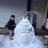 Токио завалило снегом, но японцы знали, что с ним делать