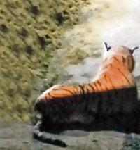 Шотландские полицейские час пытались обезвредить тигра, не понимая, что это игрушка