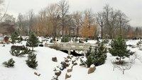 Таллин засыпало снегом