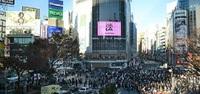 Активная жизнь в Токио