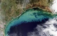 Зоны смерти в Мировом океане: почему здесь никто не живет