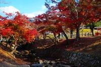 Япония, сентябрь