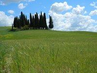 Сельские просторы Тосканы