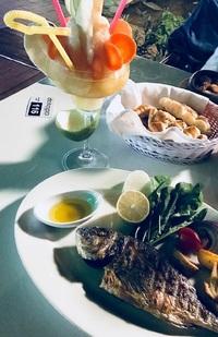 Турецкая кухня, кафе