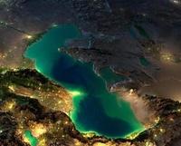 Катастрофа южных морей России: как маленький пришелец навсегда изменил экосистему